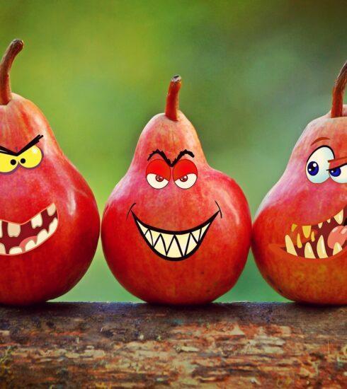 Des dents pour une bonne mastication, Action de broyer des aliments à l'aide des dents, considérée comme la première étape de la digestion.